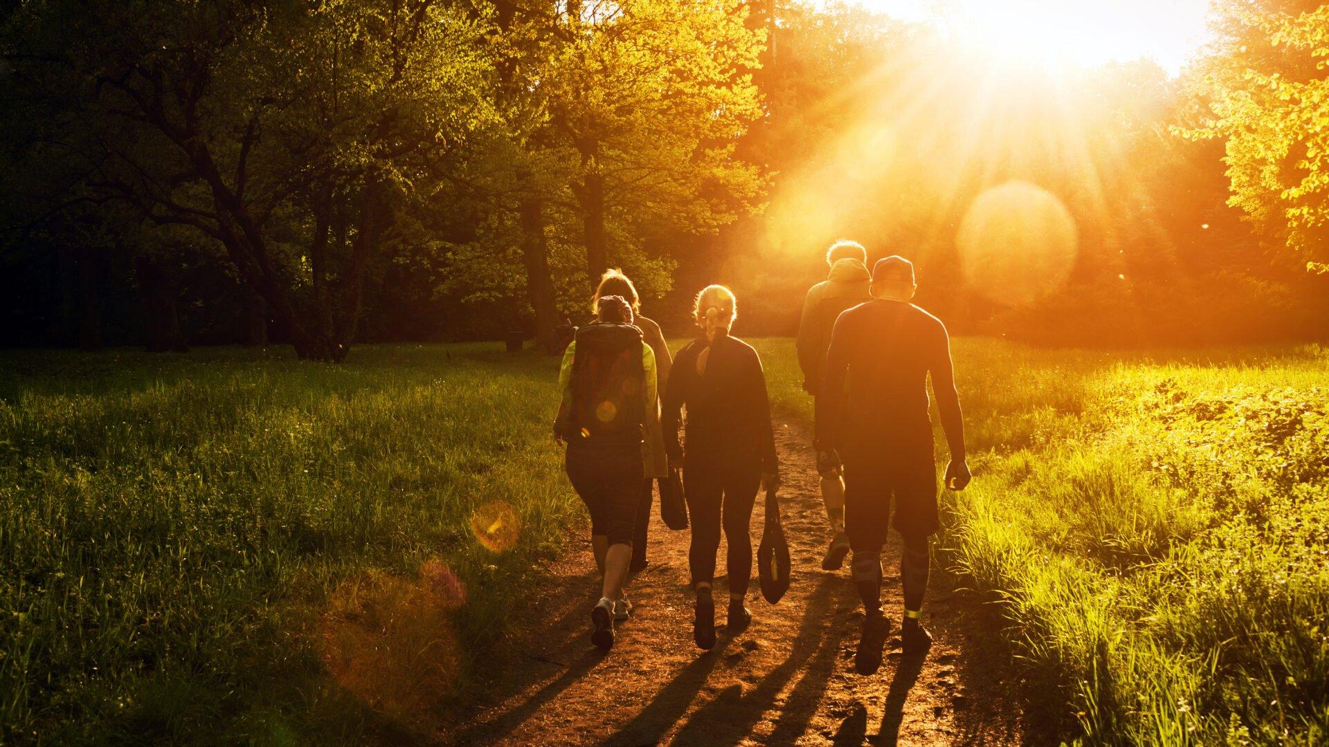 Pro bono artikkelin otsikkokuva, jossa ryhmä ihmisiä kävelee yhdessä puistossa.